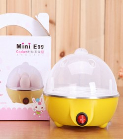 Multifunction Electric Steam Safe Automatic Egg Cooker